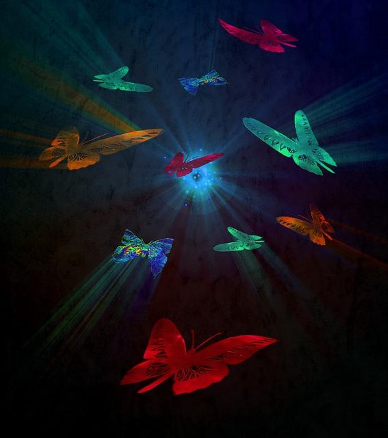 butterfly-1040278_640