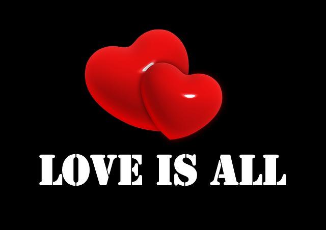 heart-471783_640 (1)