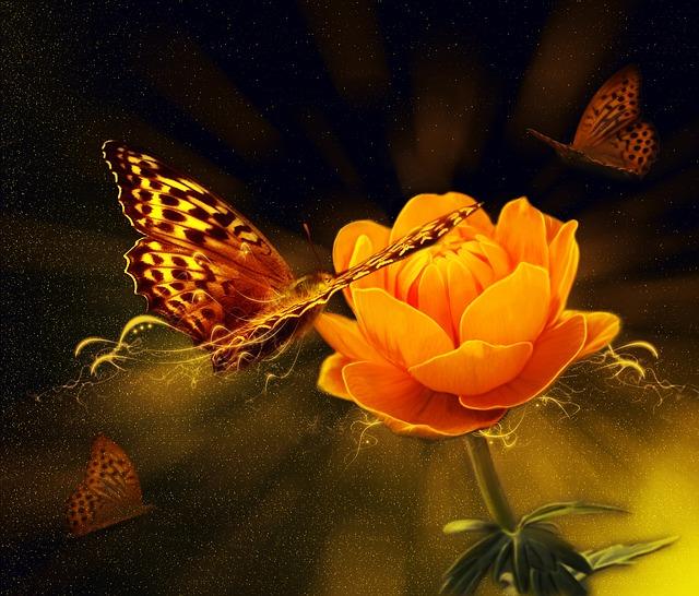 flower-805097_640